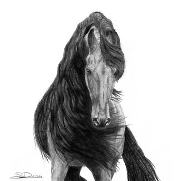 Black Flowing Manes by earth2sd