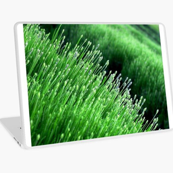 Green Lavender Field Laptop Skin