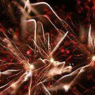 fireworks 8/11/14 by david gilliver