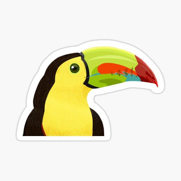 Keel-billed Toucan Sticker