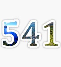 541 Sticker