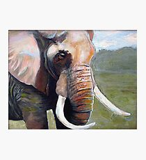 An Elephant Never Forgets Photographic Print