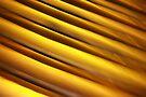 golden by david gilliver