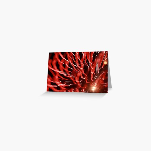 fireworks 30/11/13 Greeting Card