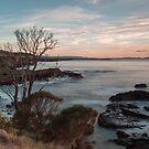 Spikey Beach Sunrise. by Warren  Patten