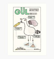 Seagull Assembly Instructions Art Print