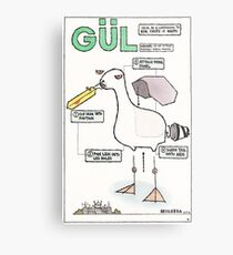 Seagull Assembly Instructions Metal Print