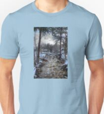 After the Winter Storm T-Shirt