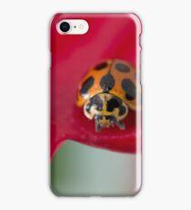 Ladybug on red flower iPhone Case/Skin