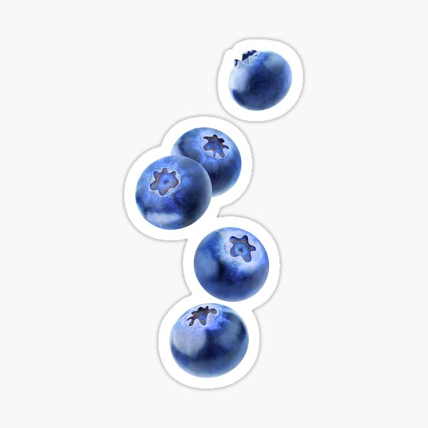 Falling blueberries Sticker