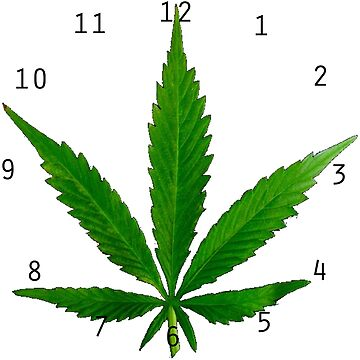 Pot leaf clock by StonerGamesInc