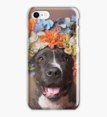 Flower Power, Angel smiling iPhone Case/Skin