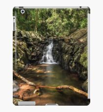 Silky Catch Lights iPad Case/Skin