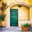 Italian facade with geraniums by Silvia Ganora