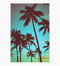 Lámina fotográfica Vintage Tropical Palms