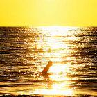Sunset Surfer by katcd89