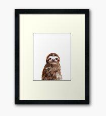 Little Sloth Framed Print