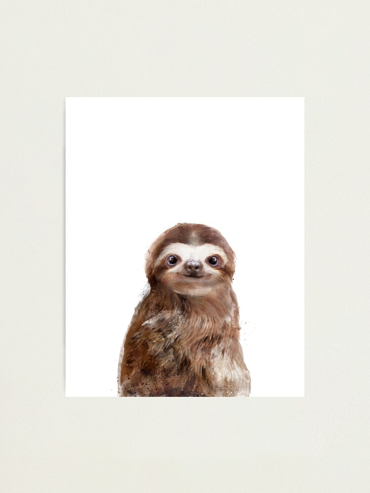 Alternate view of Little Sloth Photographic Print
