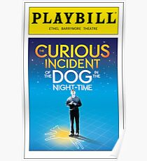 Curious Incident of the Dog in the Night Time Playbill Poster