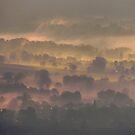 Hope in the Mist by John Dunbar