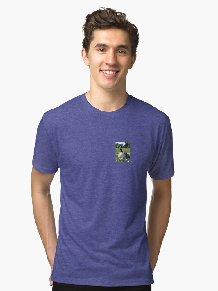 Hey You want some Bread! Tri-blend T-Shirt Front