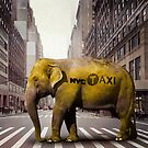 Elephant Taxi NYC by Vin  Zzep