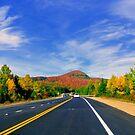 Highway 125, Quebec, Canada 2014 by Elfriede Fulda
