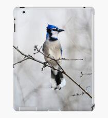 Blue Jay in A tree iPad Case/Skin