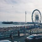 Brighton Wheel and Pier by lolohannah
