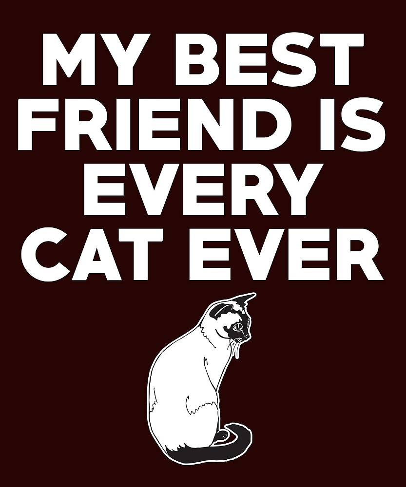 My Best Friend is Every Cat Ever by AlwaysAwesome