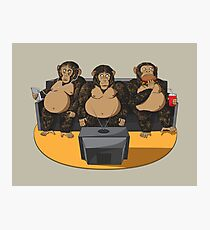 Three Modern Monkeys Photographic Print