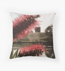 Lake Pillans Wetlands with Lithgow Blast Furnace Ruins 2  Throw Pillow