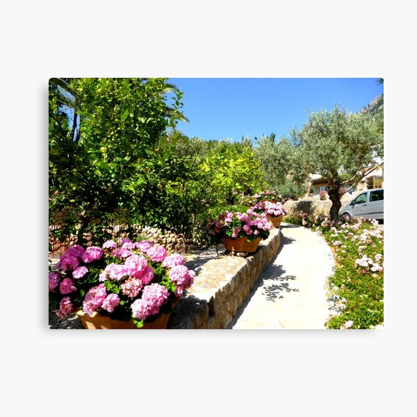 The Rose And Hydrangea Path Canvas Print