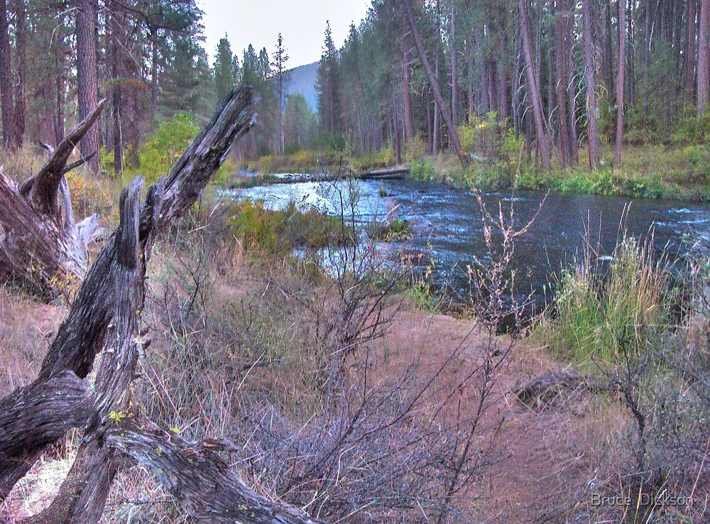 metolius riverscape by Bruce  Dickson