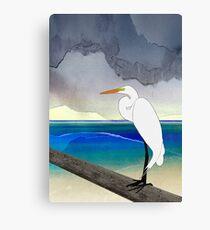 American Great Egret Canvas Print