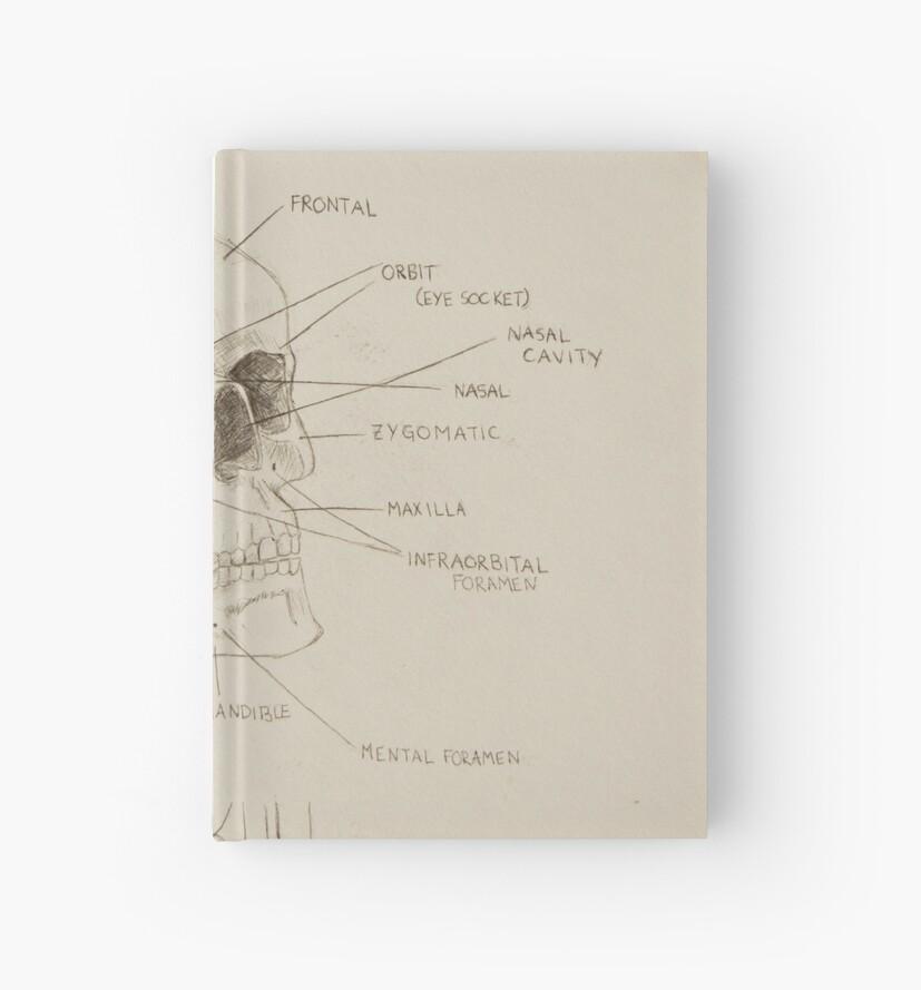 Cuadernos de tapa dura «Anatomía del cráneo humano» de baileehigart ...