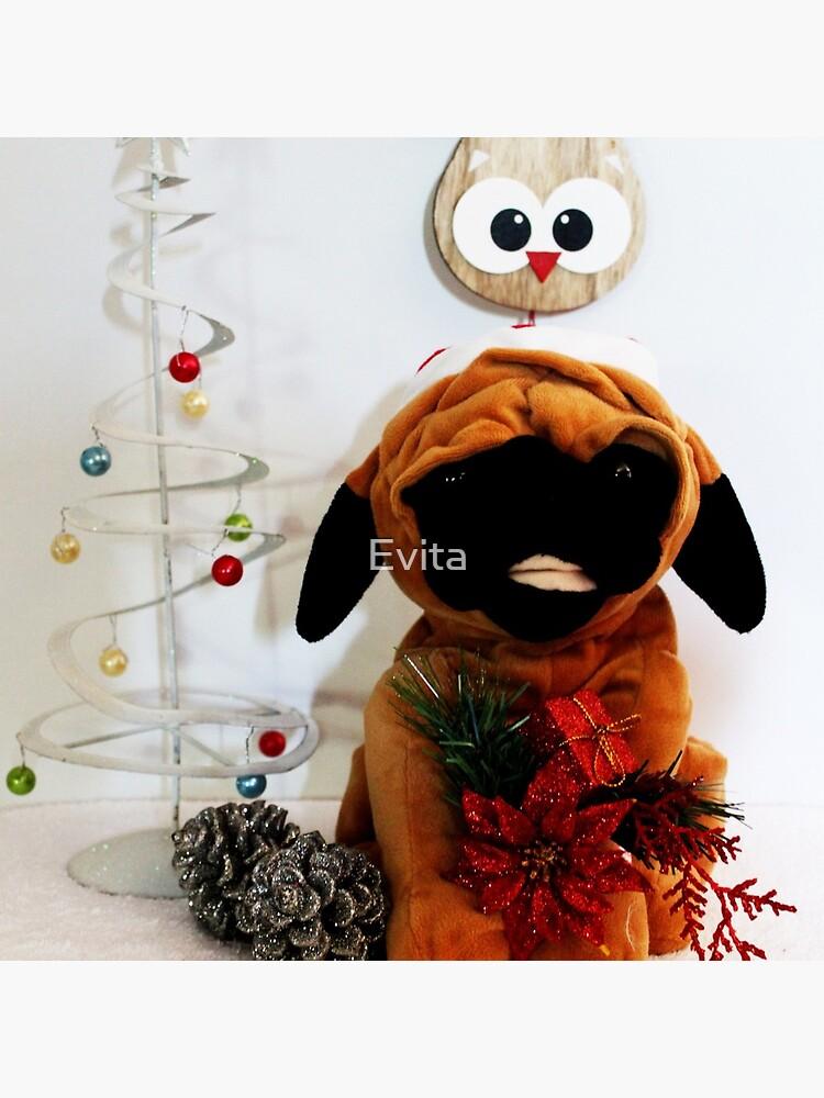 Fröhliche Weihnachten! - Nr. 3 von Evita