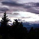 Purple Mountain Majesty by Lori Peters
