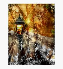 LampPost in Narnia Photographic Print