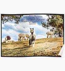 Bible Verse Genesis 1:24 Poster