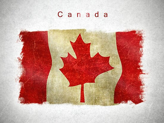 Canadian flag in vintage style by DimDom