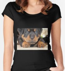 Cute Rottweiler Puppy With Blue Eyes Women's Fitted Scoop T-Shirt
