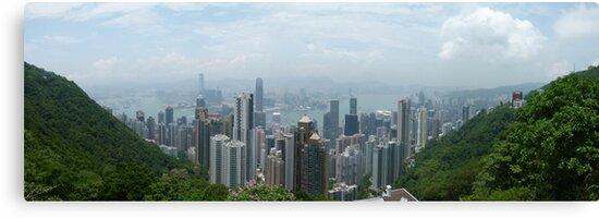 Hong Kong Panorama by Trish Meyer