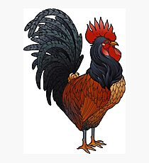 Graphic rooster Photographic Print