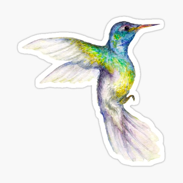 Spring with the Hummingbird Sticker