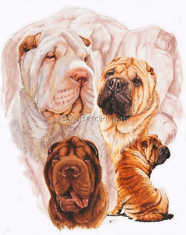 Chinese Shar Pei/Ghost by BarbBarcikKeith