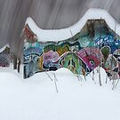 Winter in the Skatepark by Wayne King