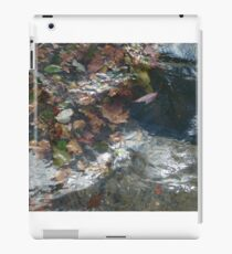 Autumn water iPad Case/Skin