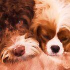 Cuddle Buddies by daphsam