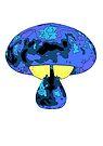 Magic Mushroom by Chris Lyttle
